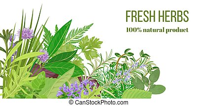 Card with Pile of Realistic popular culinary herbs. Herbal store logo. Shop sign