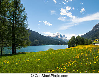 Lake of Sufers. - San Bernardino pass, Switzerland : Lake of...