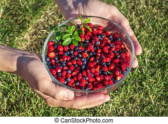Girl holding a bowl of blueberries and strawberries