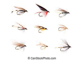 moscas,  3x3, cuadrícula, recorte, trucha, o, anzuelos