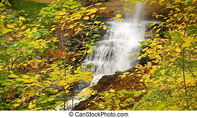 Munising Falls with Fall Color Loop - Video loop features a...