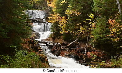 Autumn at Au Sable Falls Loop - Looping footage features Au...