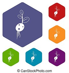Potato sprout from the root icons set