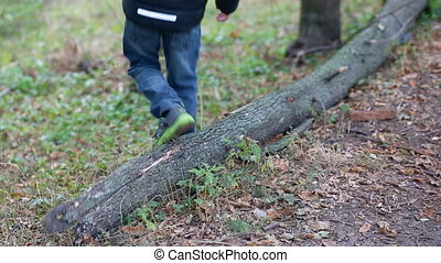 Little boy play with a fallen tree in the park. Fooling...