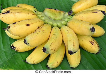 Bunch of bananas on leaf background - Closeup bunch of...