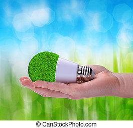 eco, 電球, 手, リードした