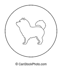 Chow-chow vector icon in outline style for web - Chow-chow...