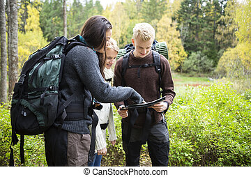 Young Hikers Checking Map In Forest - Young male and female...