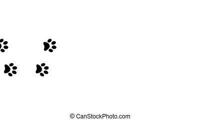 Paw prints animal feet foot footprints pawprints dog cat