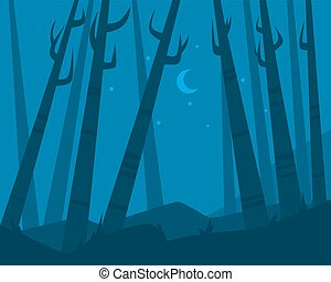 Night in forest