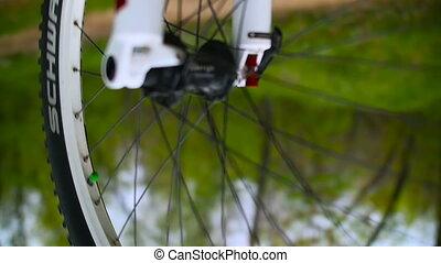 Color Bike Wheel Rotates. Outdoor Repair
