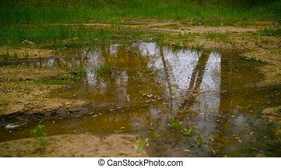 Mountian Biker Splashing Through Puddle Of Mud Water....