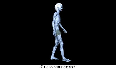 Walking zombie - 3D CG rendering of a walking zombie.