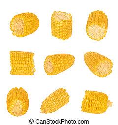 Fresh sweet corn maize on white background isolated...