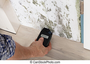 Person Hand Testing The Moldy Wall - Person Hand Measuring...