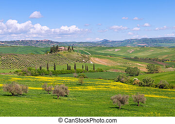Farmhouse, green hills,cypress trees in Tuscany at sunset in...
