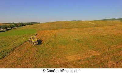 AERIAL VIEW. Small Combine Working On A Large Wheat Field