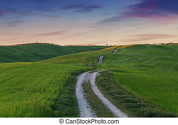 Typical Tuscany landscape, green hills springtime at sunset...