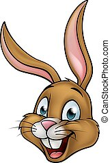 Cartoon Bunny Rabbit Face
