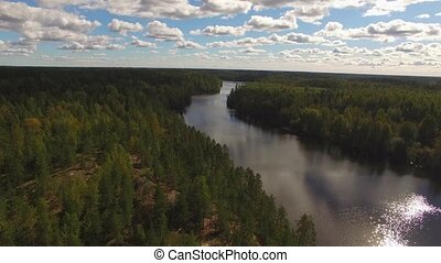 Aerial view of lake in forest 4k