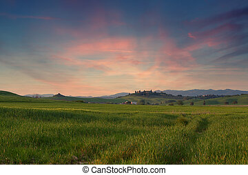 Typical Tuscany landscape springtime at sunset in...