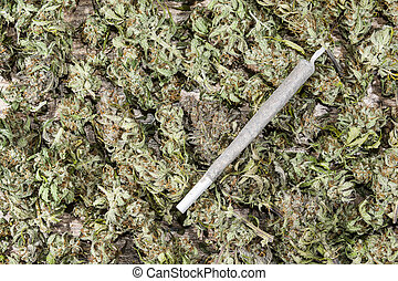 Joint on dry cannabis buds - Spliff - cannabis joint on dry...