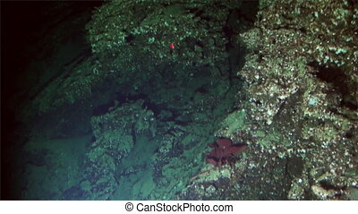 Underwater deep sea mountains from submarine Pacific Ocean...