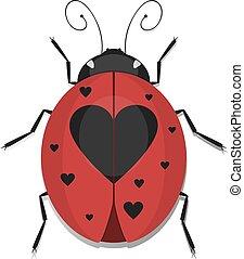 Heart Ladybug - Ladybug beetles with heart spotted wing,...