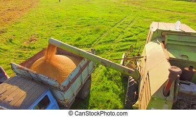 AERIAL VIEW. Rural Harvester Pouring Seeds Into Trailer -...