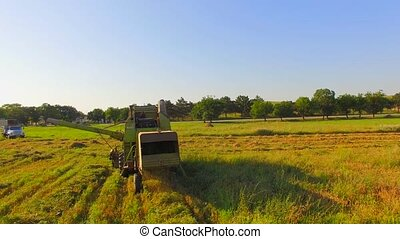 Combine Harvester Leaving Hay On Field After Mowing - Camera...