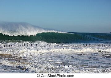 Massive Surf Newcastle Beach Australia