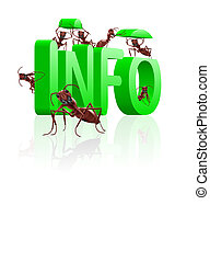 information gathering - ants gathering info or information...