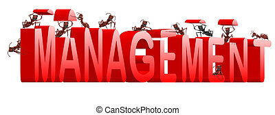 management manage organisation organise