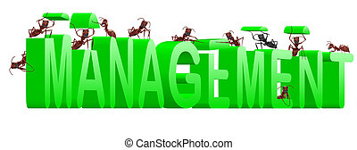 management manage organisation organise - management...