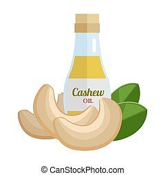 Cashew Oil Vector Illustration in Flat Design. - Cashew oil...