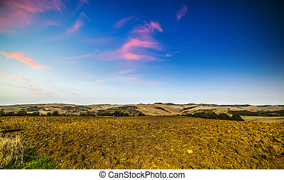 Brown landscape in Tuscany, Italy