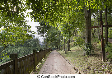 Walking Trail at Fort Canning Park