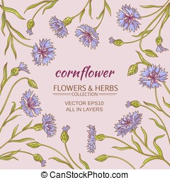 corn flower vector frame - cornflower plant vector frame on...