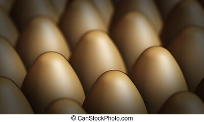 Panoraming video of brown eggs - Eggs arranged in series -...