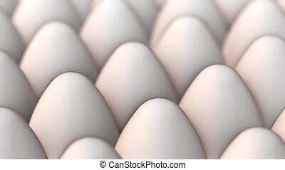 Panoraming video of white eggs - Eggs arranged in series -...