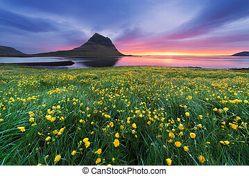 Beautiful landscape with mountain and ocean in Iceland -...