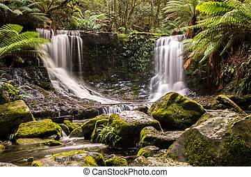 Horseshoe Falls, Mt. Field National Park, Tasmania, Australia