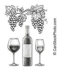 Wine still life Isolated on white background. Hand drawn...