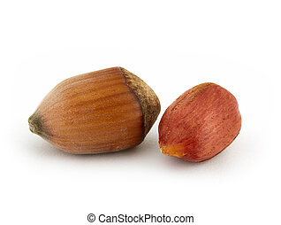 Hazel nuts isolated on the white background
