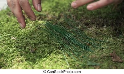 Decorator working with moss - Decorator working with green...