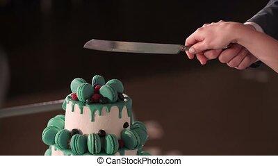 Couple cutting wedding cake closeup