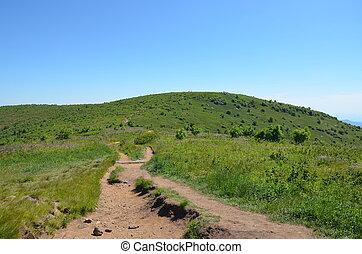 Mountain Trail