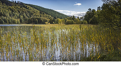 Loch Pityoulish in the Cairngorms National Park. - Loch...