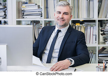 Portrait of mature business man with grey hair in his modern...
