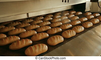 Loaf of bread on the production line in the bakery. Baked...